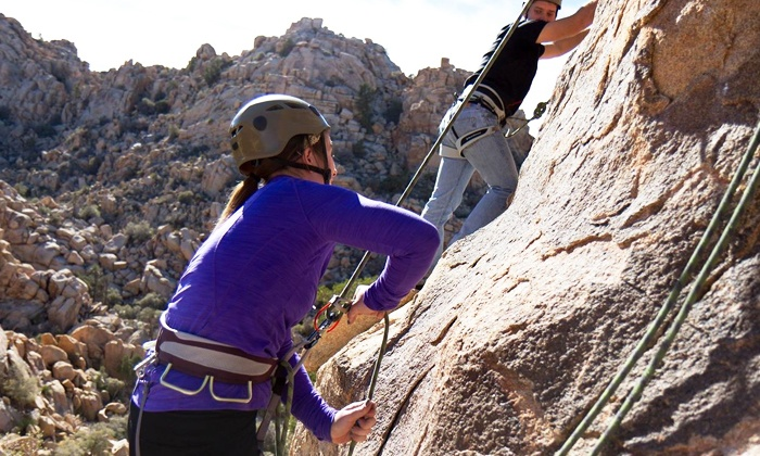 The Climbing Life Guides - Joshua Tree National Park: $160 for Four Hours of Guided Rock Climbing for Two from The Climbing Life Guides ($280 Value)
