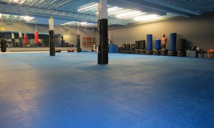 Spring Street Martial Arts - Paoli: Six Weeks of Unlimited Martial Arts Classes at Spring Street Martial Arts (80% Off)
