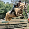 Up to 54% Off Horse-Riding Lessons in Fallbrook