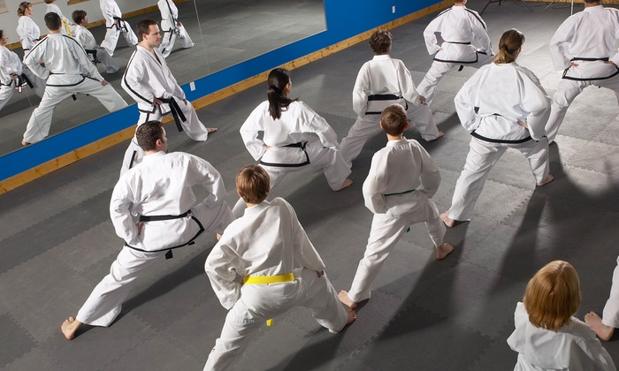 Academy of Fighting Arts - Lees Summit: Introductory Tae Kwon Do Classes at Academy of Fighting Arts (Up to 80% Off). Five Options Available.