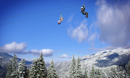 Snowshoe Tour With Option of Skyrider Canopy Tour and BigAirBag Ride at Alpine Adventures (Up to 33% Off)