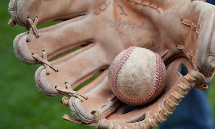 Softball or Baseball Training for One or Two at Elite Players Club   (Up to 50% Off)