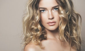 The Wild Hare Salon: Haircut with Full Foil Highlights or Color Retouch Service at The Wild Hare Salon (Up to 51% Off)