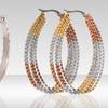 $11.99 for Stainless Steel Multicolored Hoop Earrings