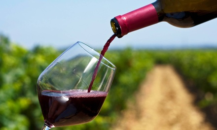 Wine Tour and Tasting for One, Two, or Four on a Weekday or Weekend at Danza del Sol Winery (Up to 59% Off)