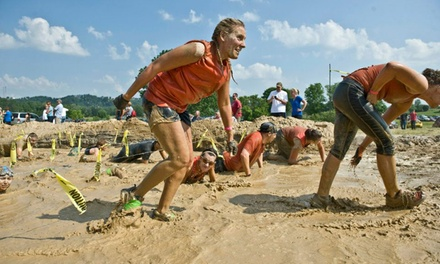 $41 for One Registration for the Muddy Fanatic 5K Race on Saturday, September 27 (Up to $82 Value)