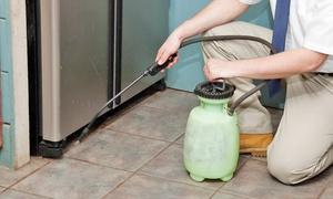 KB Lewis Extermination Cleaning Specialists: Indoor Pest Control Treatment for Up to Three Rooms from KB Lewis Extermination Cleaning Specialists (Up to 83% Off)