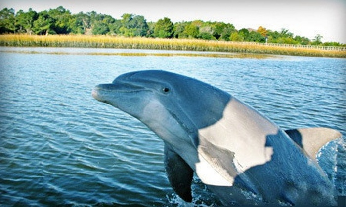 Captains Source - Charleston Harbor Resort & Marina : $ 65 for a 90-Minute Dolphin-Watching Tour or Sunset Cruise for Two from Captains Source ($ 150 Value)