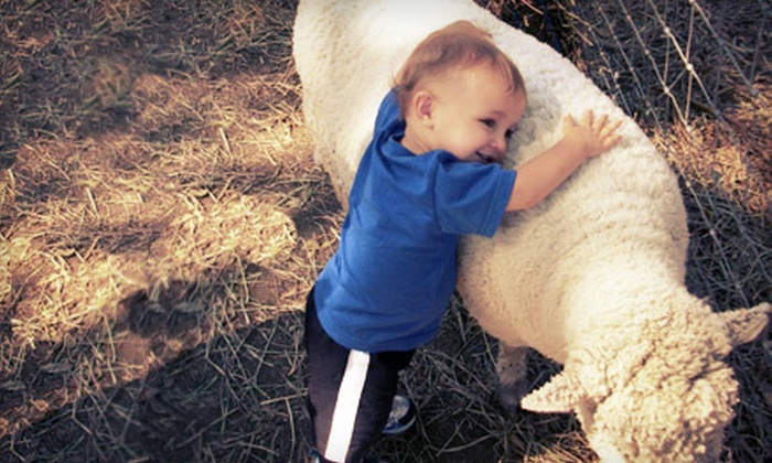 Lucky Ladd Farms - Apple Valley: Farm Outing for Two or Four at Lucky Ladd Farms in Eagleville (Half Off)