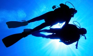 Aqua Trek Sports: Scuba Class or Open Water Diver Certification Course for One or Two at Aqua Trek Sports (Up to 61% Off)