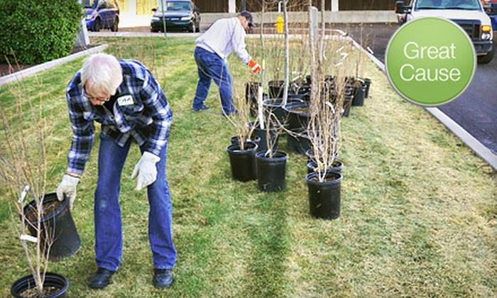 Tree New Mexico - Albuquerque: $10 Donation to Help Plant 10 Trees