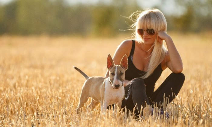 Cassandra's Domestic Services - Phoenix: $25 for Three 30-Minute Dog Walks from Cassandra's Domestic Services ($45 Value)