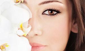 A Permanent Makeup & Skin Care Clinic: Permanent Eyebrows or Eyeliner on Upper and Lower Eyelids at A Permanent Makeup & Skin Care Clinic (55% Off)