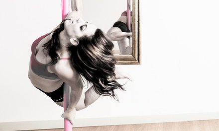 $25.25 for a 60-Minute Intro to Pole-Dancing Class at Pole Fitness NL ($39.50 Value)