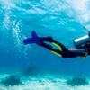 Two-Day PADI Scuba Diving Course