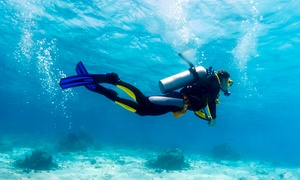 Nemo Diving centre: PADI Scuba Course: Basic (AED 890), Open Water (AED 1,300) or Advanced (AED 1,050) at Nemo Diving Centre (Up to 60% Off)