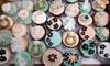 The Custom Cake Shoppe - North Central: A Dozen Cupcakes at The Custom Cake Shoppe