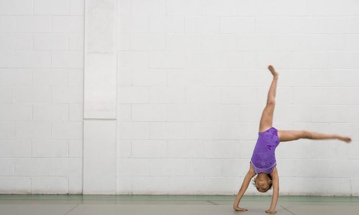 Rio Gymnastics Center Llc - Rio Rancho: $22 for $50 Worth of Gymnastics — Rio Gymnastics Center LLC