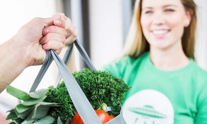 Grocery Delivery Membership - Shipt | Groupon