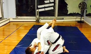 Abrecea Brazilian Jiu-jitsu Martial Arts & Fitness: Five Brazilian Jiu-Jitsu Classes at Abrecea Brazilian Jiu-Jitsu Martial Arts & Fitness (55% Off)