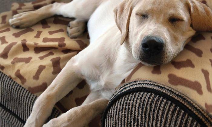 Pet blankets groupon goods for Animal planet dog blanket
