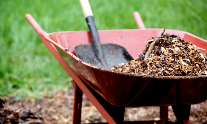 Precision Landscaping Services - Houston: $220 for $275 Groupon — Precision Landscaping Services