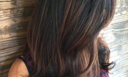 Highlights and Blow-Dry from Fringe Hair Salon (55% Off)