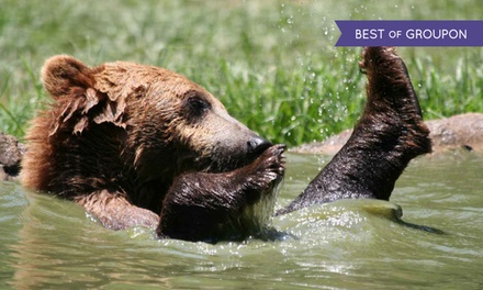 Admission for Two Adults or Two Adults and Two Kids to Hollywild Animal Park (38% Off)