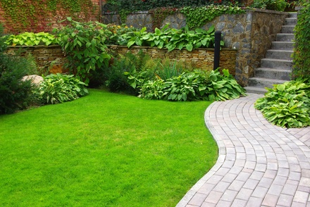 $40 for $79 Worth of Lawn and Garden Care — Organi-Lawn