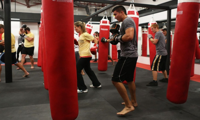 Freestyle Fighting Academy - Weston: Up to 76% Off Co-Ed Kickboxing Classes at Freestyle Fighting Academy