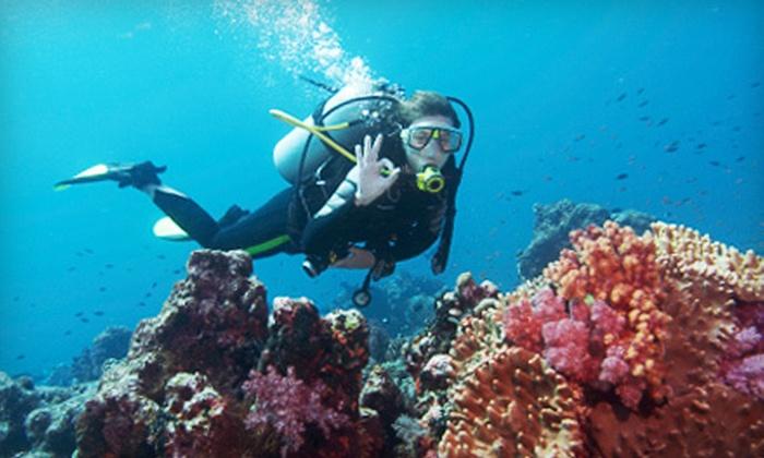 Underwater Phantaseas - Union Square: Scuba-Diving Class or PADI Certification Program at Underwater Phantaseas (Up to 51% Off)