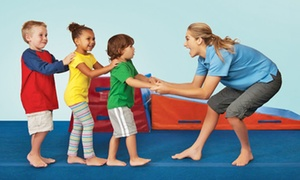 The Little Gym: Four Classes for One or Two Kids, or Two or Four Half or Full Days of Camp at The Little Gym (Up to 53% Off)