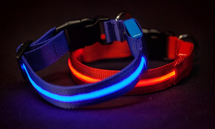 Shop Tough Gear Series 5000 LED Dog Collars and Leashes: Shop Tough Gear Series 5000 LED Dog Collars and Leashes. Two Colors Available. Free Returns.
