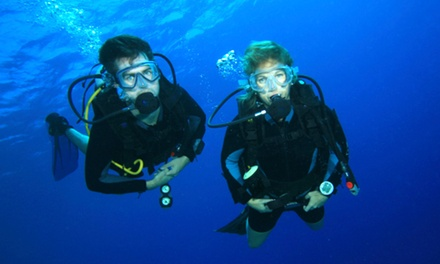 Bali: Shipwreck Ocean Dive Experience , 2, or 4 People Including Equipment, Lunch and Transfers with Bali Sun Tours