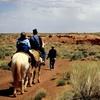 Up to 39% Off Horseback Riding