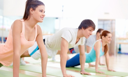 $29 for One Month of Boot-Camp Classes at Vast Fitness ($200 Value)
