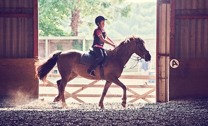 One, Two or Four Indoor Horse Riding Lessons at Fordbank Equestrian Centre (Up to 57% Off)