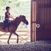 30-Minute Private Riding Lesson