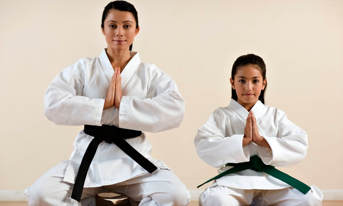 Vision Martial Arts - Multiple Locations: One-Month Children's Membership or Family Membership for Up to Five at Vision Martial Arts (Up to 93% Off)