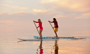 Gill Dawg: Four- or Eight-Hour Single Kayak, Tandem Kayak, or Stand Up Paddleboard Rental at Gill Dawg (Up to 56% Off)