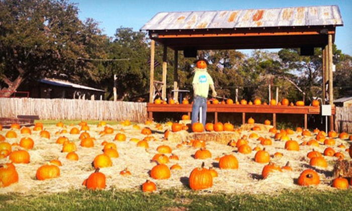 Neal's Haunted Hayrides - Concan: Halloween Attractions for One Adult or Two Adults and Two Kids at Neal's Haunted Hayrides (Half Off)