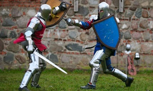 Iron Shield Arms: Lessons in Historical Fighting Arts at Iron Shield Arms (Up to 73% Off). Four Options Available.