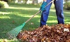 LocalHands - Chatard - Forest Hills: Two, Four, or Six Hours of Leaf Removal from LocalHands (Up to 58% Off)