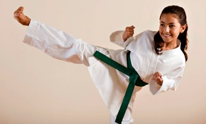 Tiger & Dragon: $49  for One Month of Martial Arts Training for a Child or Adult at Tiger & Dragon ($200  Value)