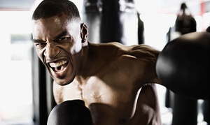 S.W.E.A.T. Wellness & Nutrition: $35 for One Month of Unlimited Boxing or Boot-Camp Classes at S.W.E.A.T. Wellness & Nutrition ($99 Value)