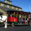 Up to 81% Off a Horse-Drawn-Trolley Tour