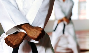 I.M.A. Karate Houston: 8, 12, or 20 Karate Classes for Kids or Adults at I.M.A. Karate Houston (Up to 80% Off)