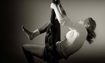 $25  for a Two-Hour Introductory Aerial-Arts Workshop at Chattanooga Aerials ($50 Value)