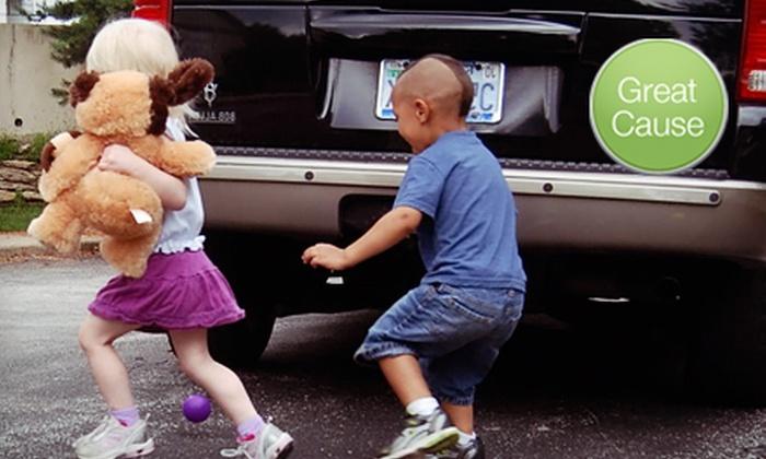 KidsAndCars.org: $10 Donation to Help Fund BlindZone Awareness Kits