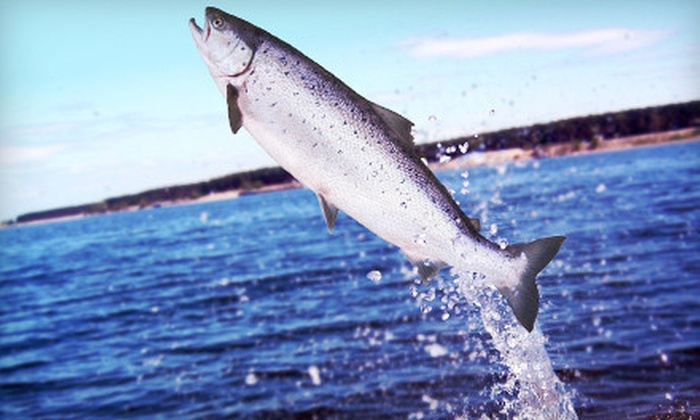 Captain Hook's Charter Fishing - Captain Hook's Charter Fishing: Salmon-Fishing Trip for One, Two, or Six from Captain Hook's Charter Fishing in St. Joseph (Up to 53% Off)